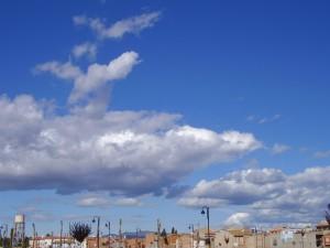 2005 Museros Oct-Nov