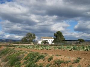 2006 El Maset de Josep