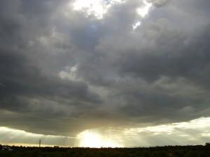 2007 Museros