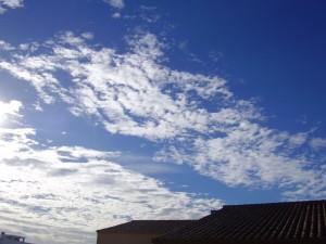2008 Enero