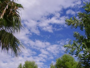 2008 Museros otoño