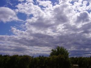 2009 Museros marzo