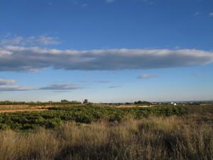 2011 Comarca