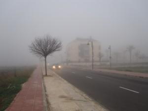 Foto RAMÓN MORENO (383)